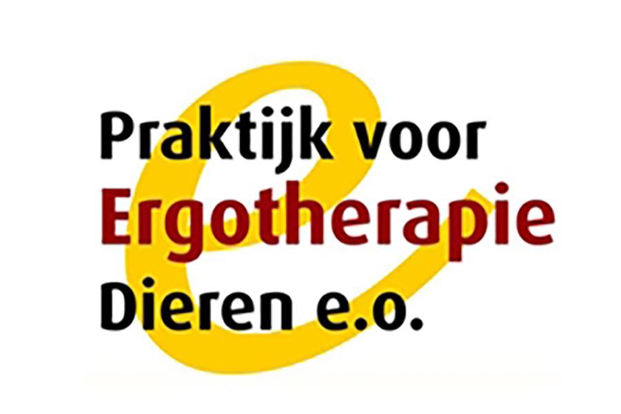 Ergotherapie   FysioKort Doesburg